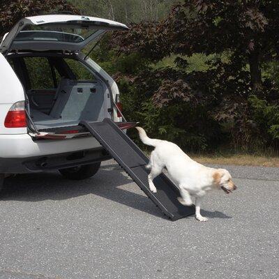 Vehicle 62 Pet Ramp