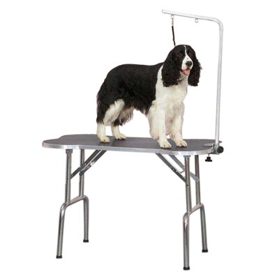 Bone-Shaped Folding Grooming Table Size: 33.3 H x 22.3 W x 6.8 D