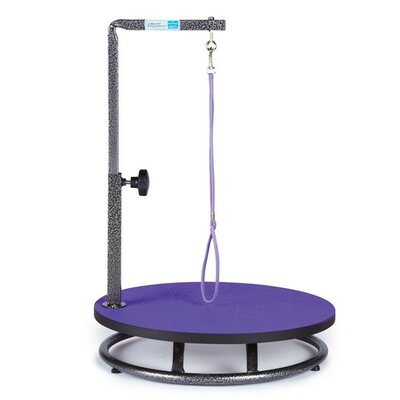 Petedge Small Dog Grooming Table Finish: Purple