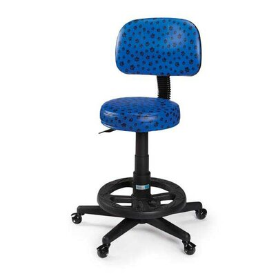 Pawprint Deluxe Grooming Stool Finish: Blue