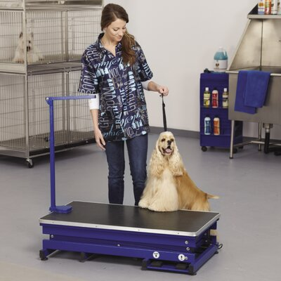 X- Tend Electric Grooming Table Finish: Blue