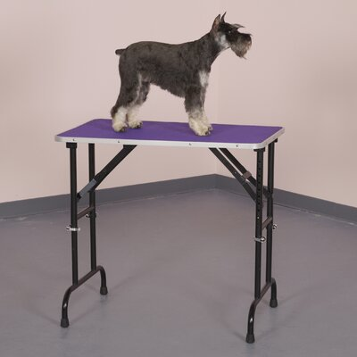 Grooming Table Finish: Purple
