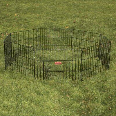 Everlasting Exercise Dog Pen with Door Size: Small (24 H x 24 W)