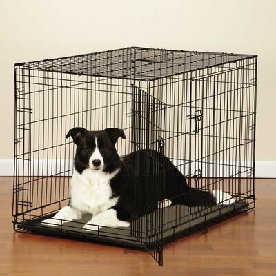 Easy Pet Crate Size: Medium ( 22 H x 30 W x 19 L)