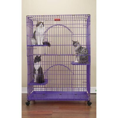 Foldable Cat Crate Color: Purple