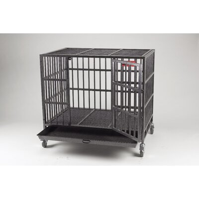 Empire Pet Crate Size: Large (41.25 H x 42.25 W x 30.75 L)