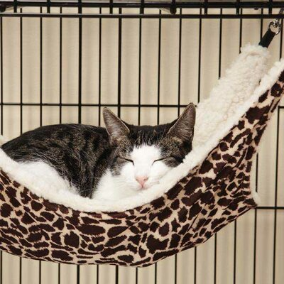 Wild Time Small Pet Cage Hammock Color: Black