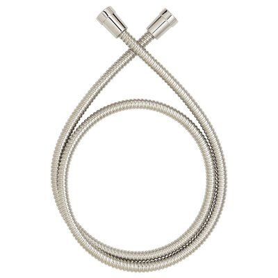 Hand Shower Hose Finish: Brushed Nickel, Length: 5