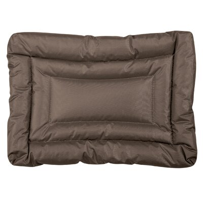 Water Resistant Dog Mat Size: Small (24 L x 17 W), Color: Chocolate