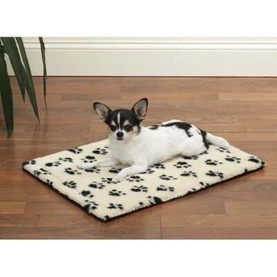 "Dog Crate Dog Mat Size: Extra Small (17.75"" L x 11.75"" W), Color: Ivory"