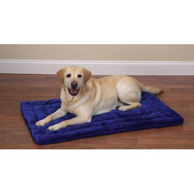 "Plush Dog Mat Size: Large (32"" L x 20"" W), Color: Royal Blue"