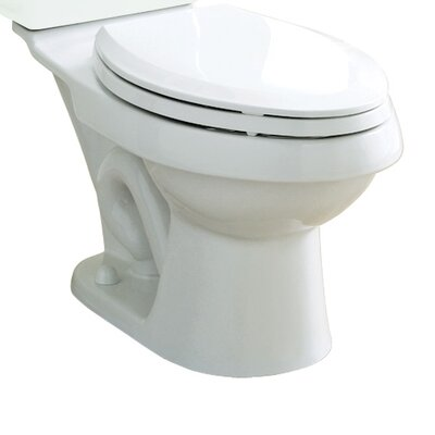 Dual Force Dual Flush Elongated Toilet Bowl Only Finish: White