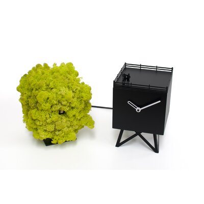Tischkuckucksuhr Birdwatching | Dekoration > Uhren > Kuckucksuhren | Schwarzgrün | Progetti