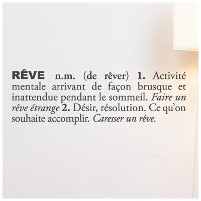 Blabla R�ve Wall Decal Color: Charcoal T3119-FR-R73