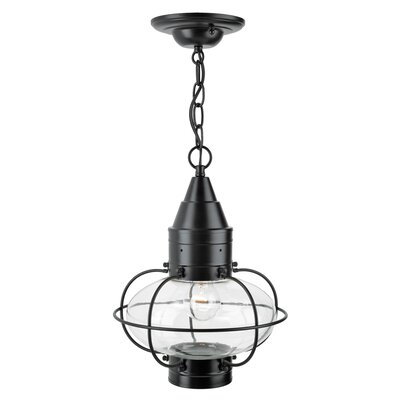 Withyditch 1-Light Outdoor Hanging Lantern
