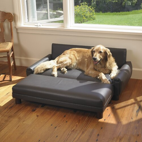 Cozy Sofa Beds For Dogs With Image Fire3fly Storify