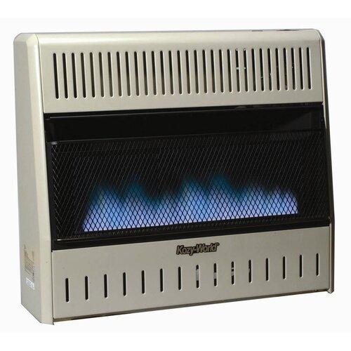 World Marketing 30000 BTU Dual Fuel Blue Flame Wall Heater