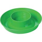 Screw On 1 Quart Poultry Water Base Color: Green
