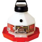 Plastic Poultry Waterer in Red Size: 7 Gallon