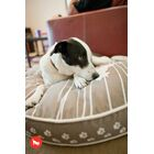 Cosmopolitan Dog on Wire Round Dog Pillow Size: Small (27.5