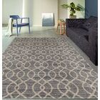 Elite Soft Gray Area Rug Rug Size: Rectangle 7'10