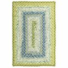 Cotton Braided Seascape Area Rug Rug Size: Rectangle 6' x 9'