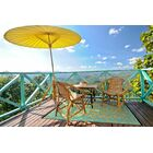 Lightweight Reversible Gala Saffron/Blue Turquoise Indoor/Outdoor Area Rug Rug Size: 5' x 8'