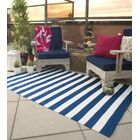Nantucket Hand Woven Blue/White Indoor/Outdoor Area Rug Rug Size: Runner 2'6