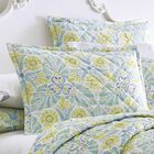 Painted Medallions Quilted Sham Size: King