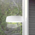 Axel 1-Light Pendant Shade Color: Matte White, Bulb Type: LED
