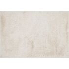 Siipola Shag Hand-Tufted Ivory Area Rug Rug Size: Rectangle 7'9
