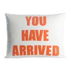 Zen Master You Have Arrived Throw Pillow Color: Charcoal / White