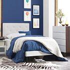 Ziemer Vinyl Upholstered Platform Bed Size: King, Color: White