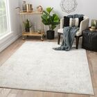 Lolani Power-Loomed Silver Area Rug Rug Size: Rectangle 9' x 12'