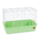 Deep Tub Small Animal Cage Color: Green, Size: 16