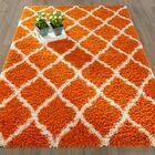 Radford Soft Orange Shaggy Area Rug Rug Size: Rectangle 5'3