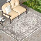 Murphysboro Cream/Gray/Brown Indoor/Outdoor Area Rug Rug Size: 7'10