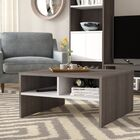 Frederick Storage Coffee Table with Magazine Rack Color: Dark Gray/White