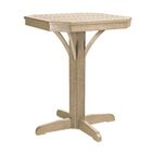 Raja Plastic Bar Table Color: Beige, Size: 37