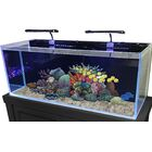 60 Gallon Rimless Glass Combo Aquarium Kit Color: Flat Black