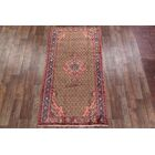 One-of-a-Kind Fears Traditional Koliaei Hamedan Persian Hand-Knotted 4'11