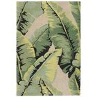Stender Palm Hand-Tufted Green/Tan Area Rug Rug Size: Rectangle 5' x 7'6