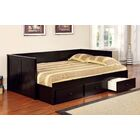 Ballsallagh Daybed Color: Black