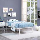 Daenerys Platform Bed Color: White, Size: Queen