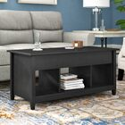 Lamantia Lift Top Coffee Table Color: Estate Black