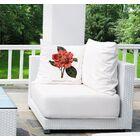 Vesta Botanical 6 Throw Pillow Size: 24