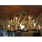Lyla 16-Light Novelty Chandelier