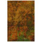 Truman Crackle Rust Indoor/Outdoor Area Rug Rug Size: Rectangle 4'11
