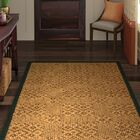 Camile Hand Woven Brown Area Rug Rug Size: Rectangle 4' X 6'