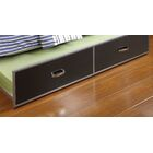Fanning Trundle Unit